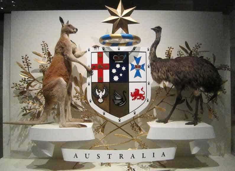Your Missing Link in Australia, Part One