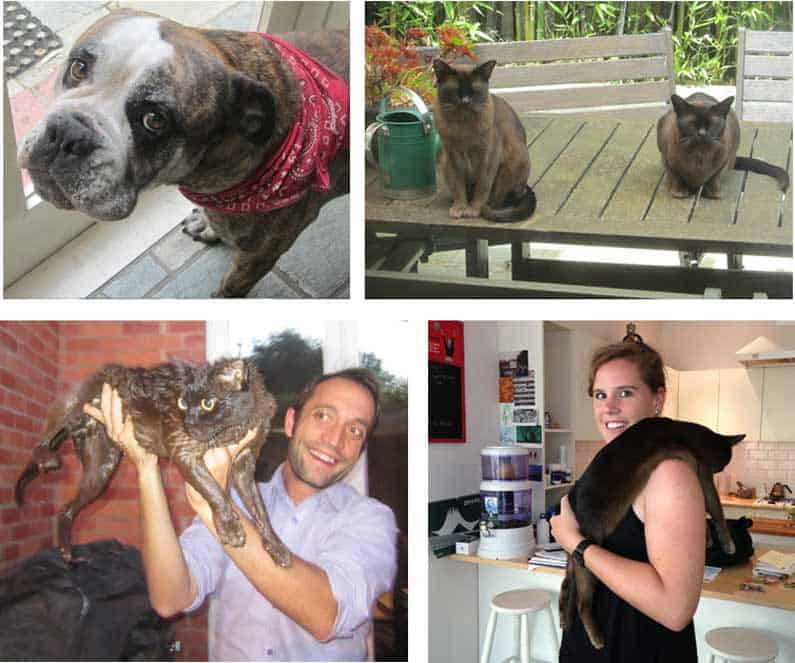 """In Melbourne I stayed with Laura and Greg and their lovely """"kids"""", Ruby, Tia & Bailey. Bailey fell into the fishpond and Laura jumped to his rescue - Henny Jensen"""