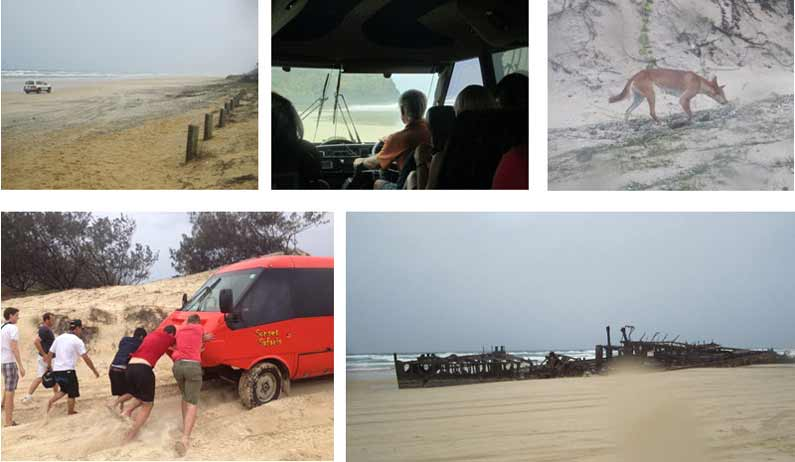An unforgettable and very wet experience on Fraser Island, the world's largest sand island. Our vehicle got stuck in the wet sand, we saw wild dingoes and passed the rusty wreck of the SS Maheno - YML v/Henny Jensen