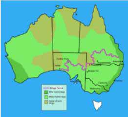 This map shows the Dingo Fence - longest fence in the world - across the south eastern part of Australia