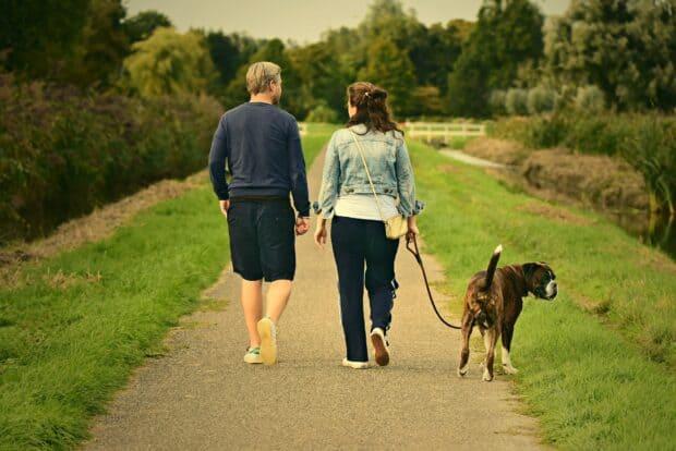Nutids-r | Går tur med hunden | Your Missing Link